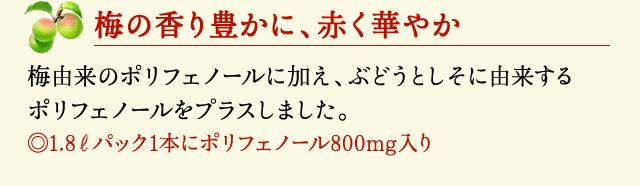 【梅の香り豊かに、赤く華やか】 梅由来のポリフェノールに加え、ぶどうとしそに由来するポリフェノールをプラスしました。(1.8ℓパック1本にポリフェノール800mg入り)